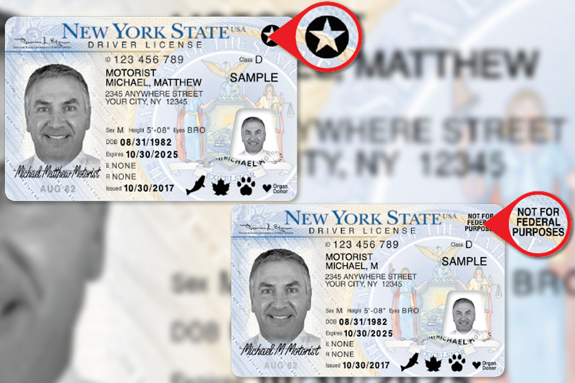real-id-license-6743