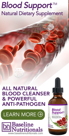 Blood Support from Baseline Nutritionals